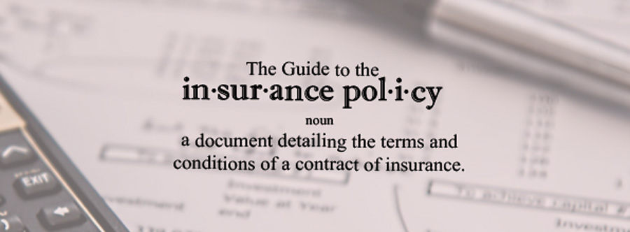 Insurance Policy Header with Calculations