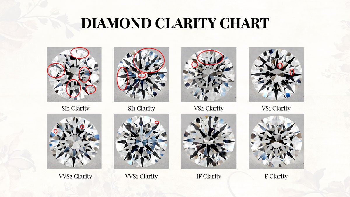 Diamond Clarity Chart Infograph With Inclusions