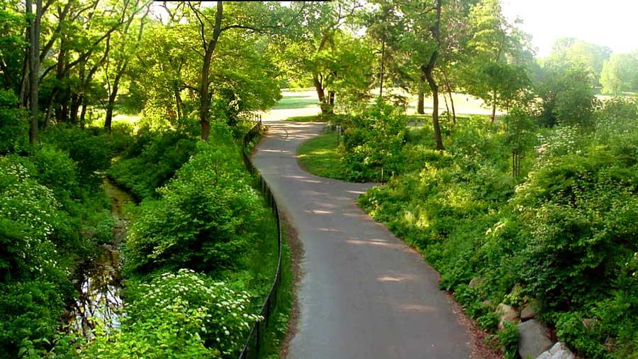 Prospect Park Pathway