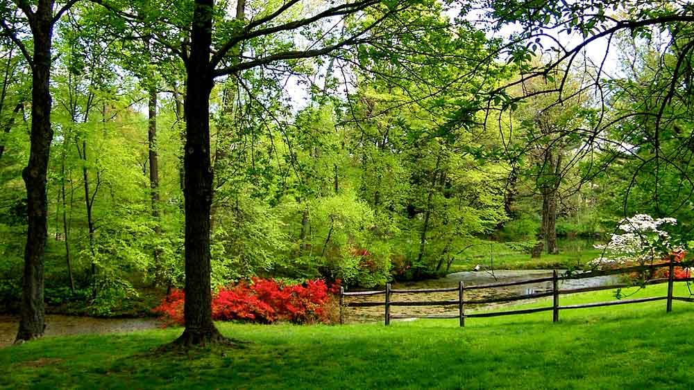 Gardens at Wyckoff